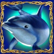 delphin-joker