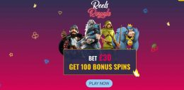 Reels Royale Casino Vorschau Bonus